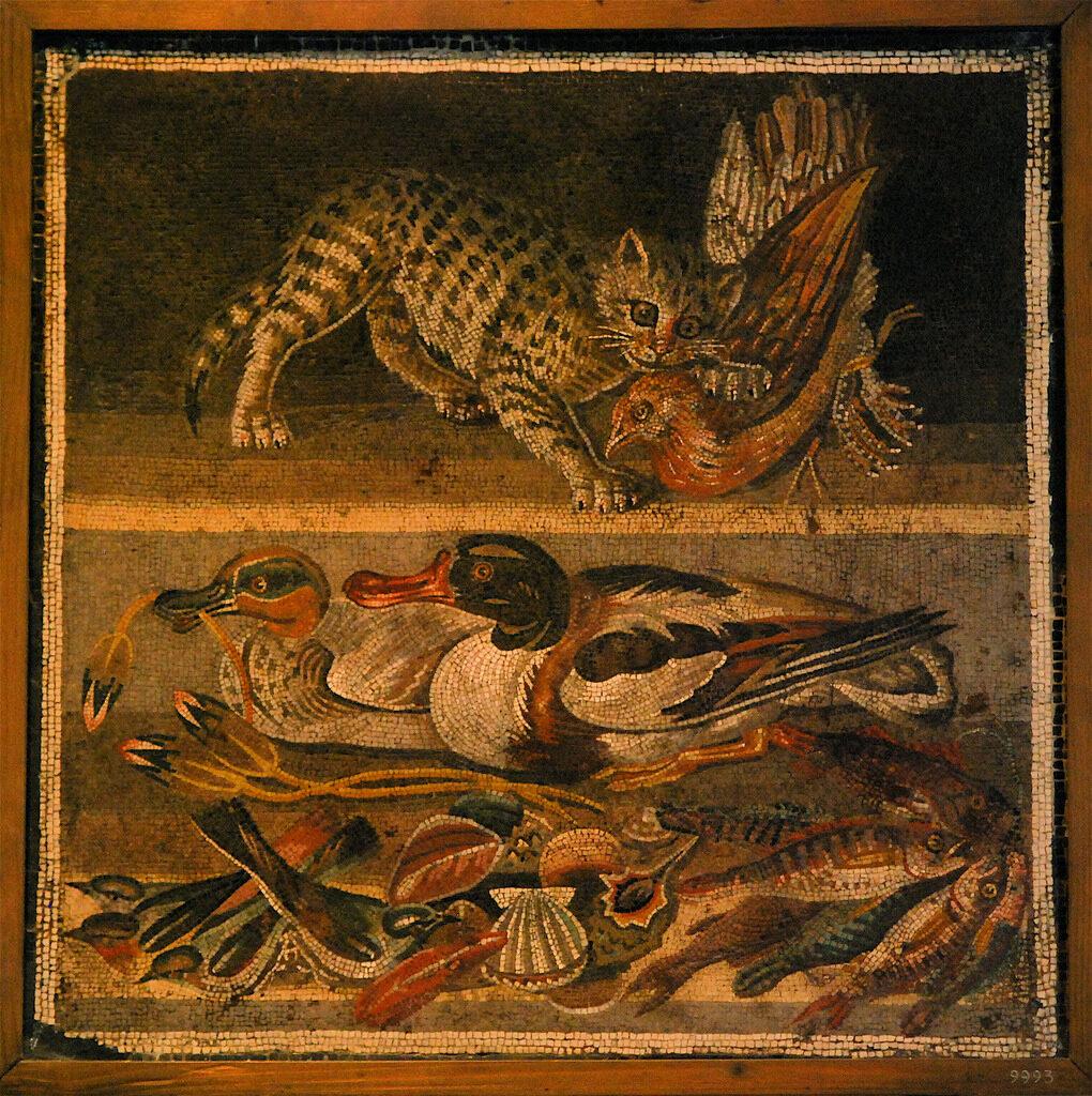 carne cucine antica roma