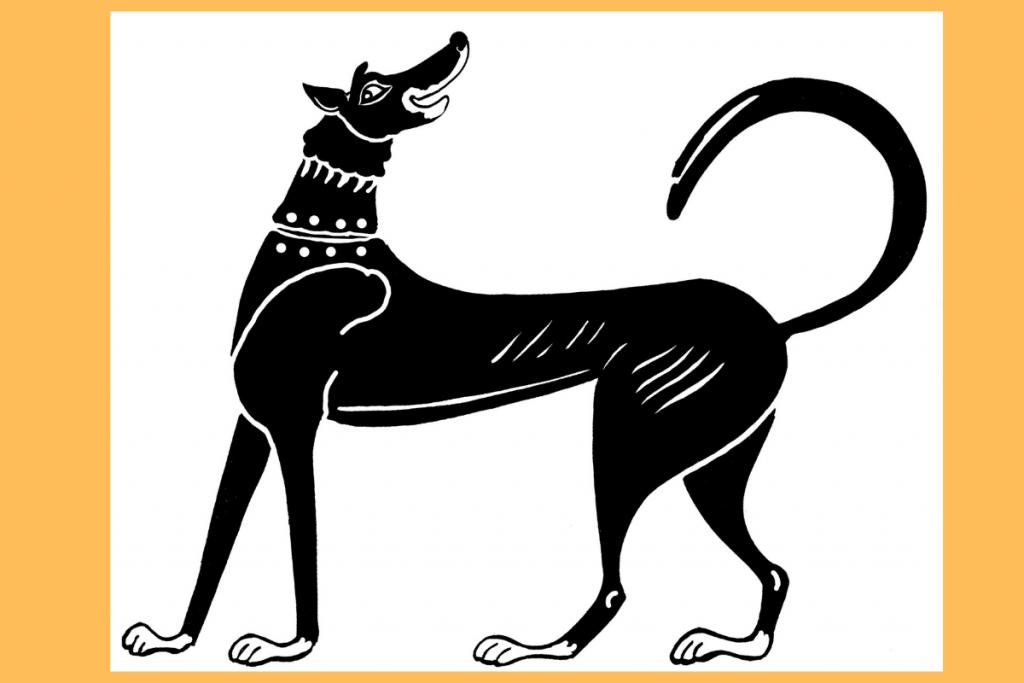 museo pet-friendly