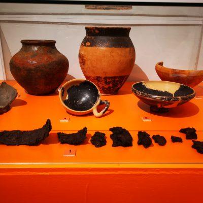 museo archeologico versiliese